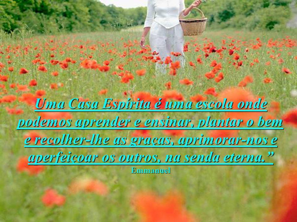 Uma Casa Espírita é uma escola onde podemos aprender e ensinar, plantar o bem e recolher-lhe as graças, aprimorar-nos e aperfeiçoar os outros, na send