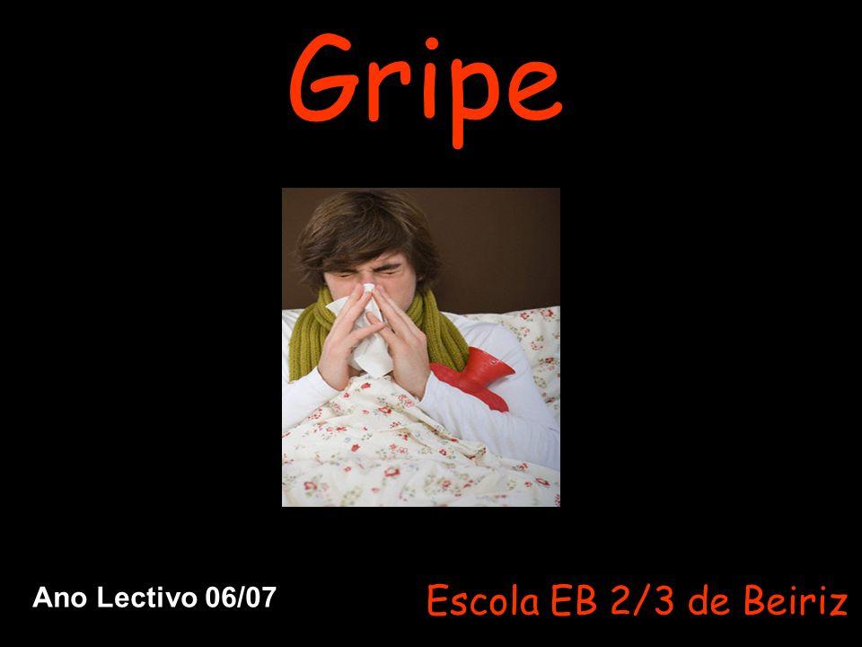 Gripe Escola EB 2/3 de Beiriz Ano Lectivo 06/07