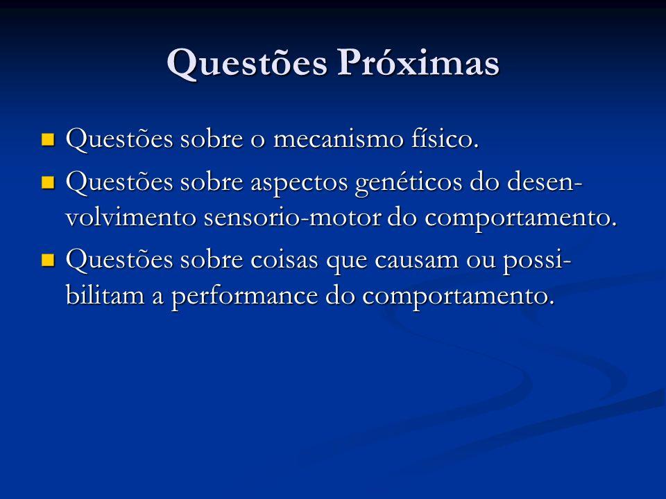 Questões Próximas Exemplos de Questões Próximas : Exemplos de Questões Próximas : Como ocorre mecanicamente o comportamento.