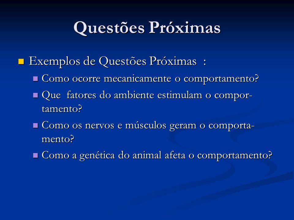 Questões últimas Questões últimas são aquelas sobre as razões evolucionárias do comportamento.