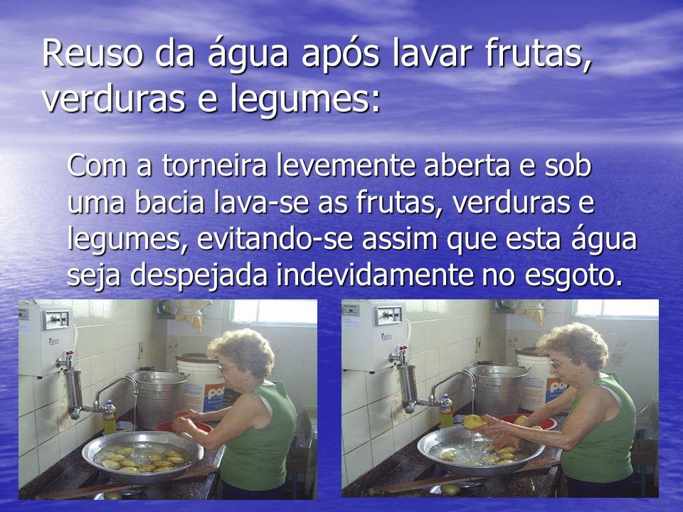 Reuso da água após lavar frutas, verduras e legumes: Com a torneira levemente aberta e sob uma bacia lava-se as frutas, verduras e legumes, evitando-s