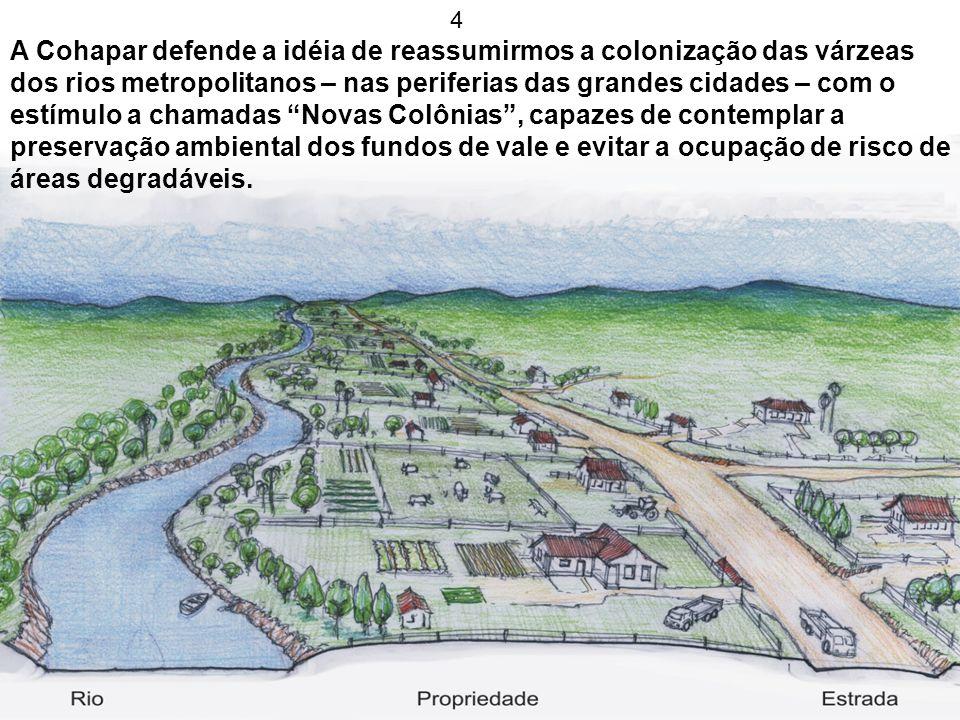 4 A Cohapar defende a idéia de reassumirmos a colonização das várzeas dos rios metropolitanos – nas periferias das grandes cidades – com o estímulo a