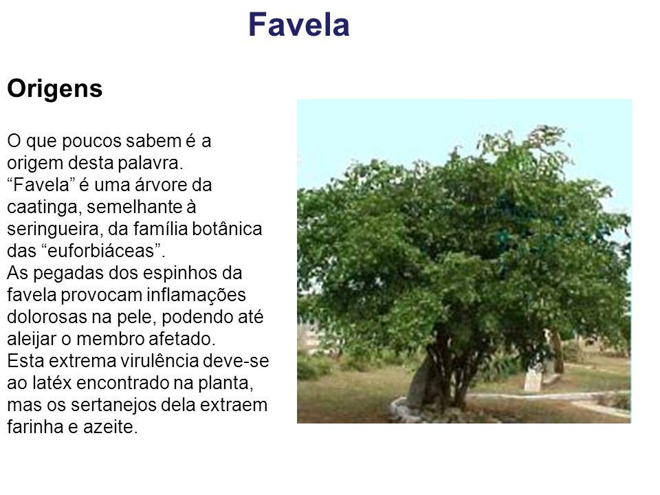 Favelas A origem da aplicação do nome Favela às ocupações irregulares remonta ao Rio de Janeiro de 1897, quando lá chegaram, sofridos e empobrecidos, os soldados sobreviventes da guerra dos Canudos.