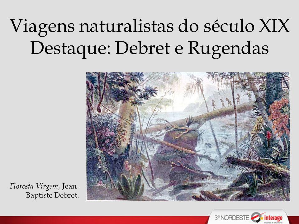 Viagens naturalistas do século XIX Destaque: Debret e Rugendas Floresta Virgem, Jean- Baptiste Debret.