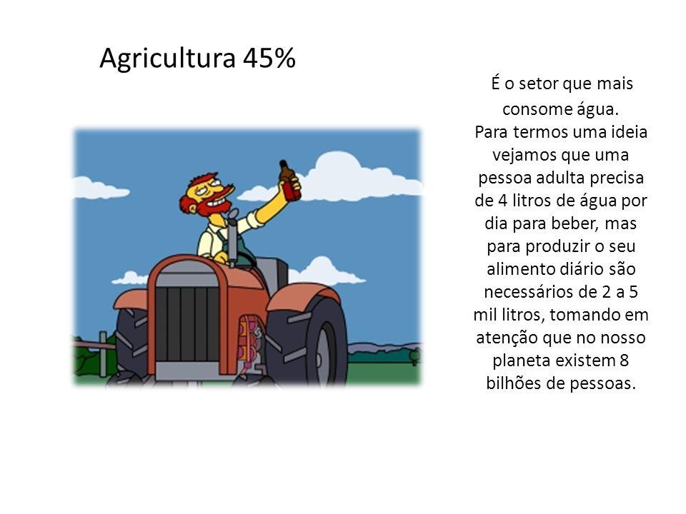 Agricultura 45% É o setor que mais consome água. Para termos uma ideia vejamos que uma pessoa adulta precisa de 4 litros de água por dia para beber, m