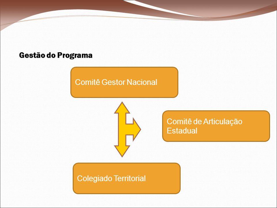 Gestão do Programa Comitê Gestor Nacional Comitê de Articulação Estadual Colegiado Territorial