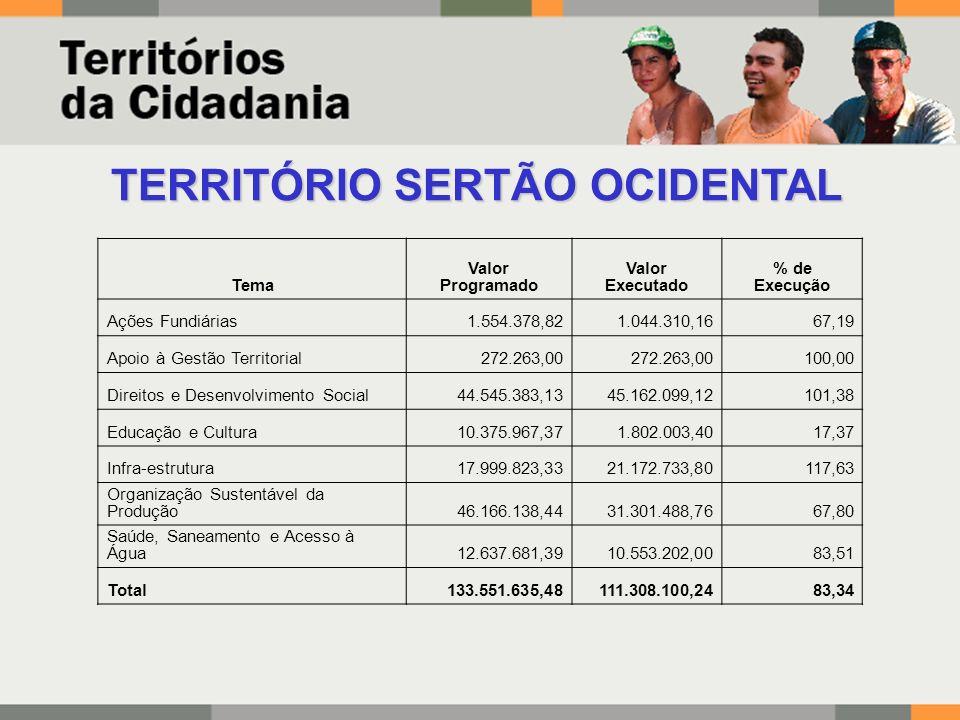 TERRITÓRIO SERTÃO OCIDENTAL Tema Valor Programado Valor Executado % de Execução Ações Fundiárias1.554.378,821.044.310,1667,19 Apoio à Gestão Territori