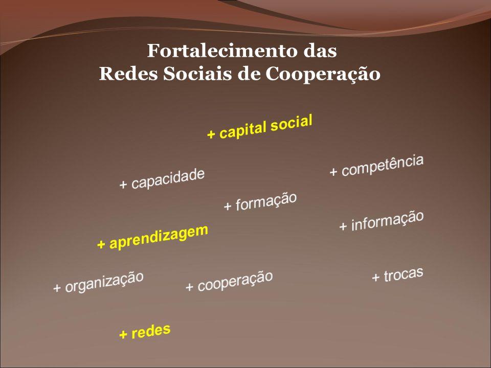 Fortalecimento das Redes Sociais de Cooperação