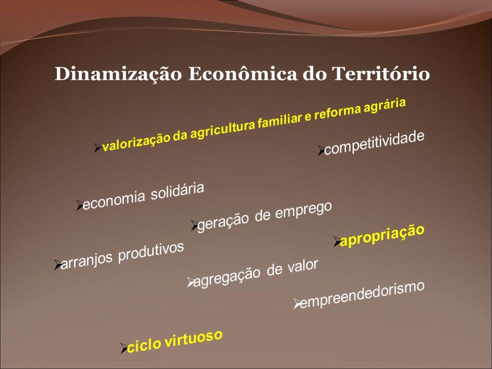 Dinamização Econômica do Território