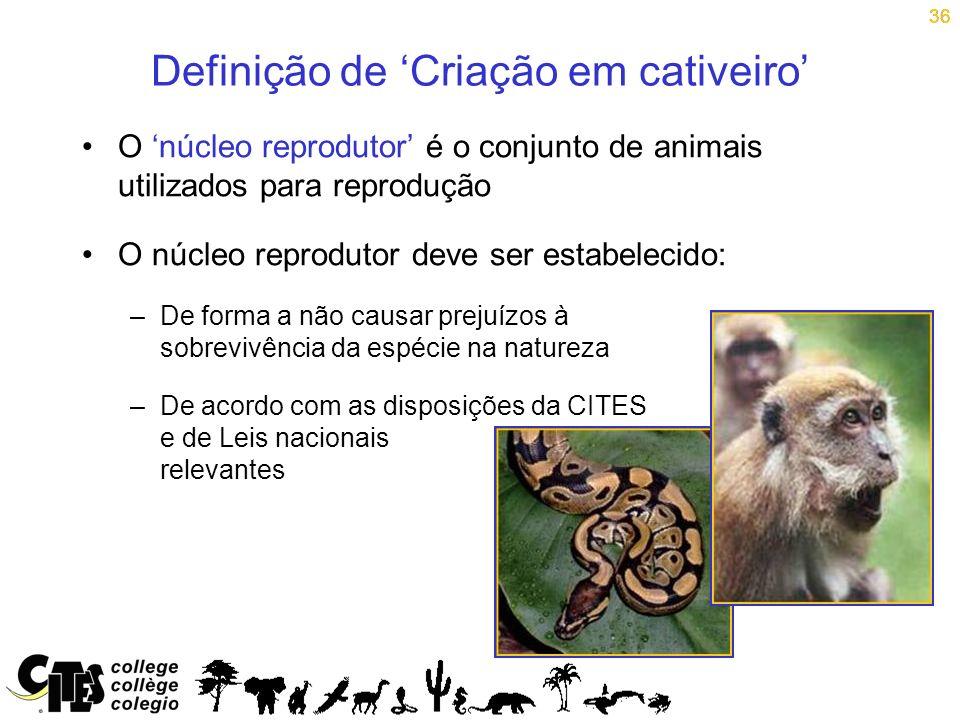 36 Definição de Criação em cativeiro O núcleo reprodutor é o conjunto de animais utilizados para reprodução O núcleo reprodutor deve ser estabelecido: