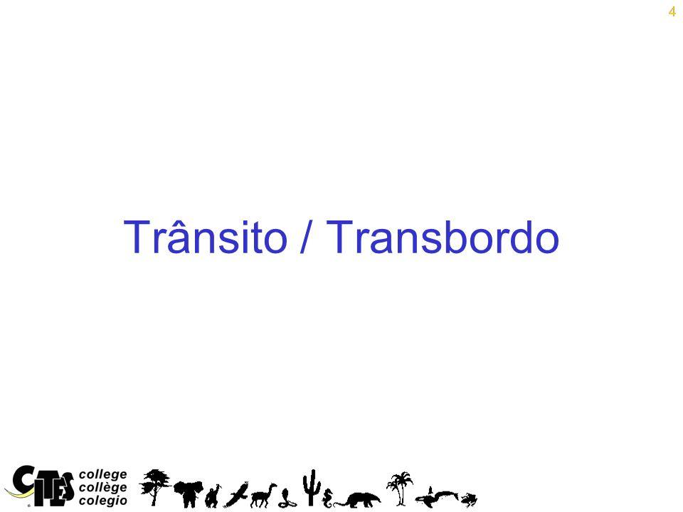 4 Trânsito / Transbordo 4