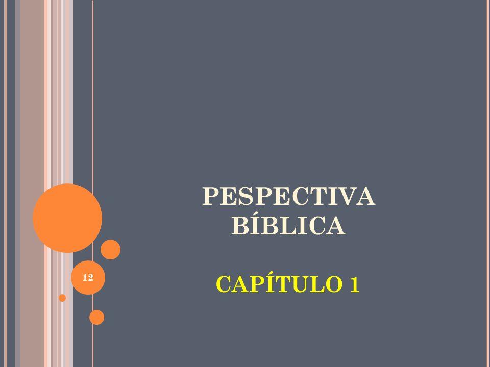 PESPECTIVA BÍBLICA CAPÍTULO 1 12