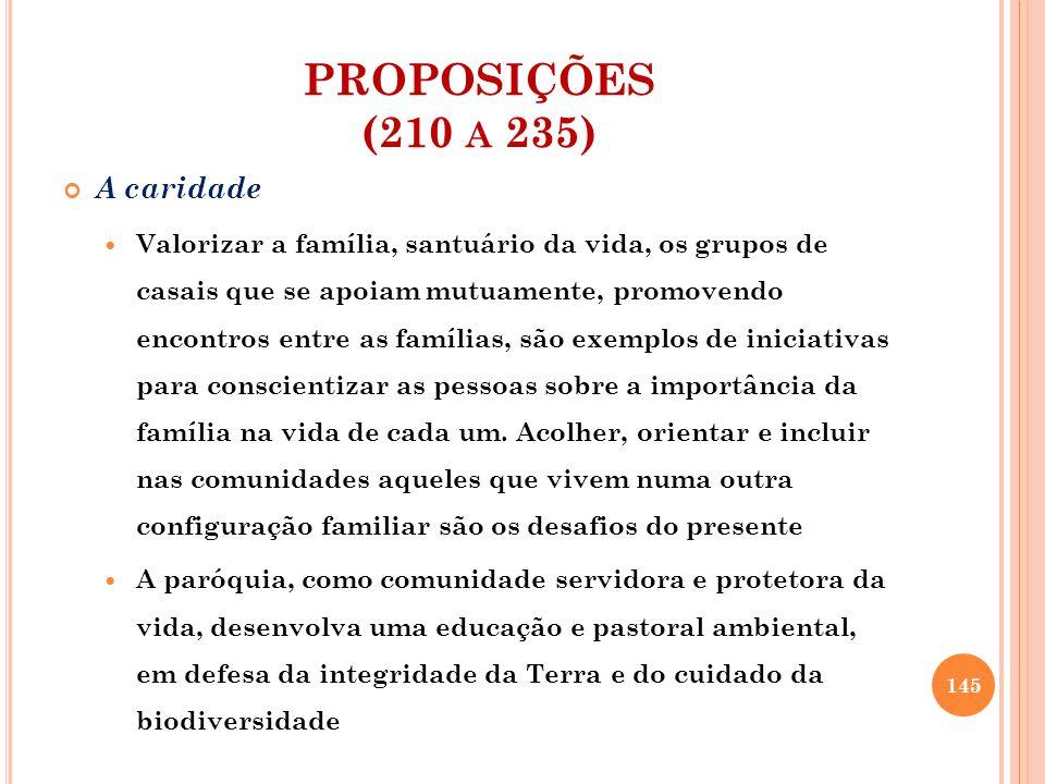 PROPOSIÇÕES (210 A 235) A caridade Valorizar a família, santuário da vida, os grupos de casais que se apoiam mutuamente, promovendo encontros entre as