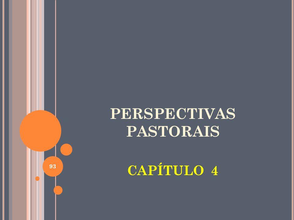 PERSPECTIVAS PASTORAIS CAPÍTULO 4 93