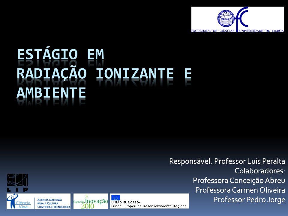 Responsável: Professor Luís Peralta Colaboradores: Professora Conceição Abreu Professora Carmen Oliveira Professor Pedro Jorge