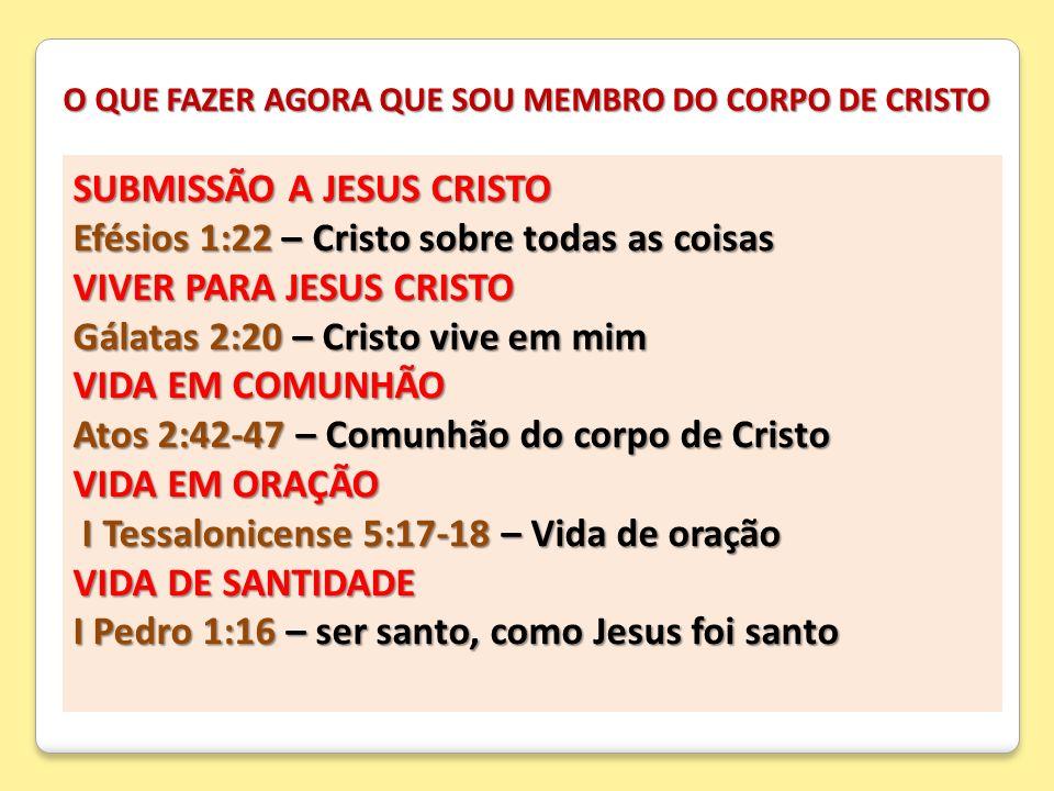 O QUE FAZER AGORA QUE SOU MEMBRO DO CORPO DE CRISTO SUBMISSÃO A JESUS CRISTO Efésios 1:22 – Cristo sobre todas as coisas VIVER PARA JESUS CRISTO Gálat