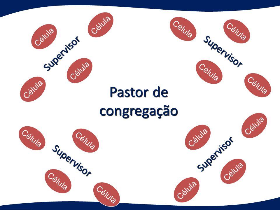 Pastor de congregação Supervisor Célula Supervisor Supervisor Supervisor