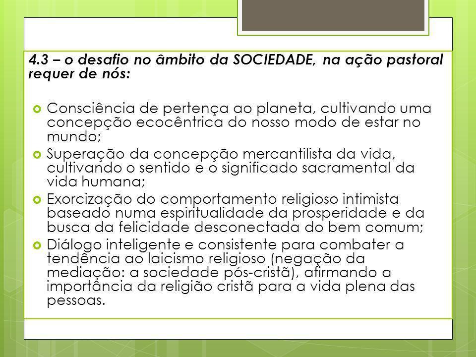4.3 – o desafio no âmbito da SOCIEDADE, na ação pastoral requer de nós: Consciência de pertença ao planeta, cultivando uma concepção ecocêntrica do no
