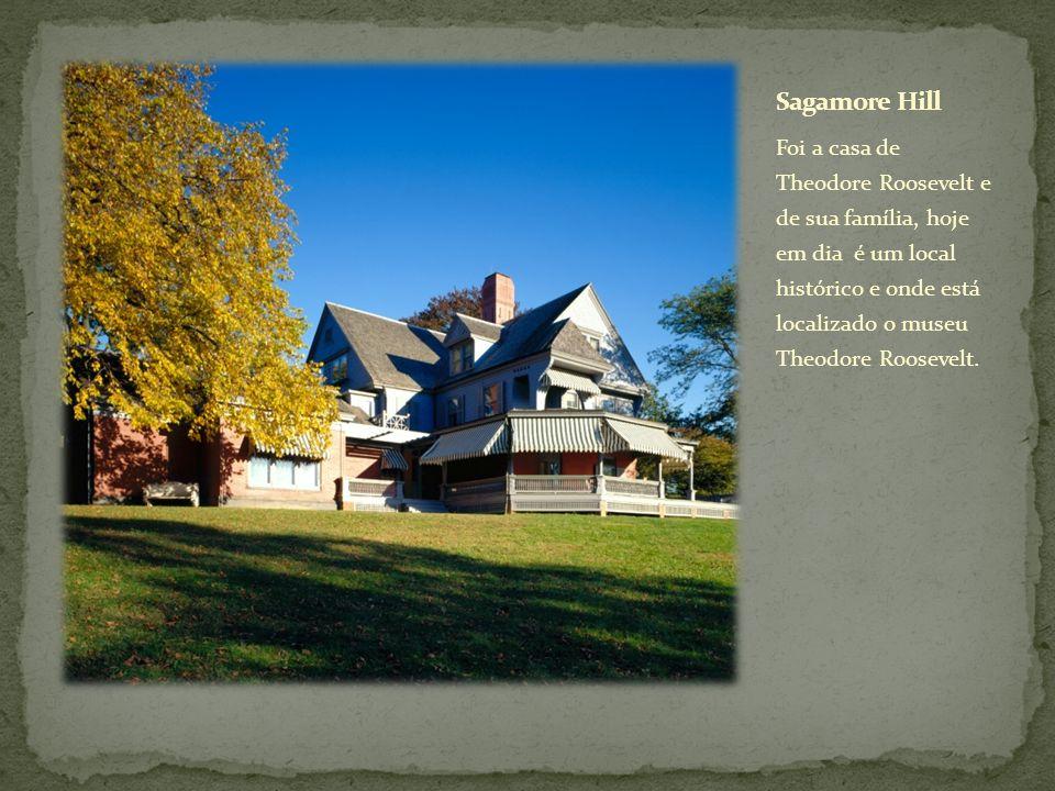 Foi a casa de Theodore Roosevelt e de sua família, hoje em dia é um local histórico e onde está localizado o museu Theodore Roosevelt.