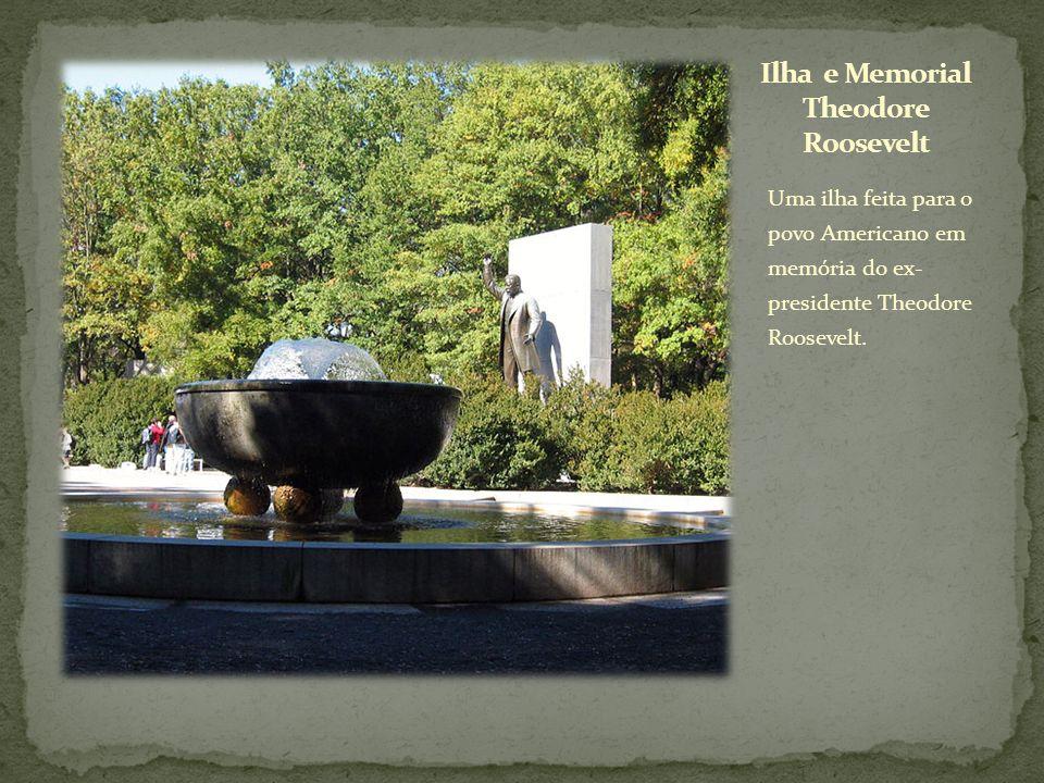 Uma ilha feita para o povo Americano em memória do ex- presidente Theodore Roosevelt.
