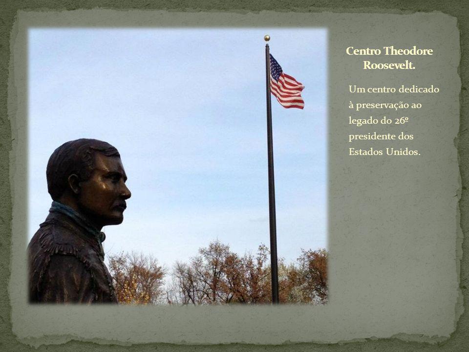 Um centro dedicado à preservação ao legado do 26º presidente dos Estados Unidos.