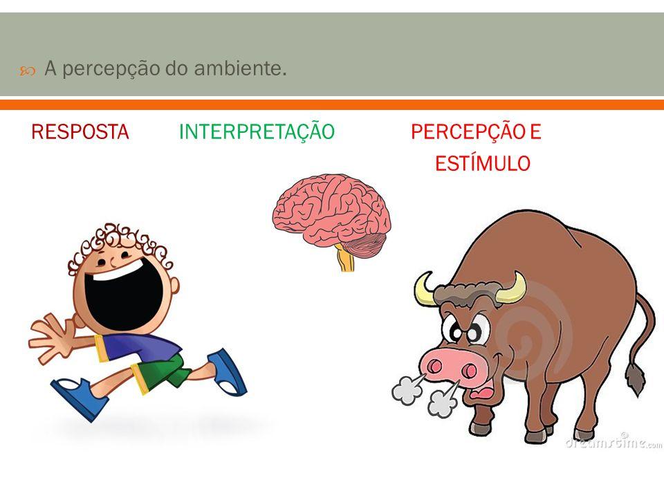 A percepção do ambiente. RESPOSTA INTERPRETAÇÃO PERCEPÇÃO E ESTÍMULO
