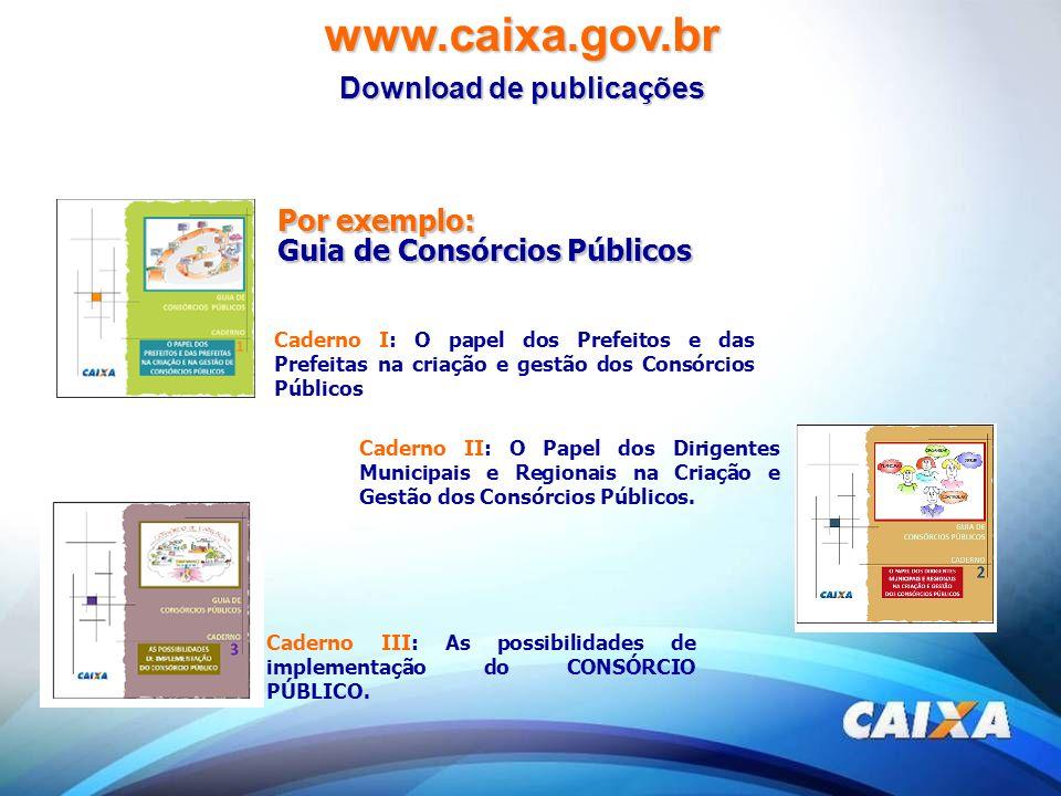 Caderno I: O papel dos Prefeitos e das Prefeitas na criação e gestão dos Consórcios Públicos Caderno II: O Papel dos Dirigentes Municipais e Regionais