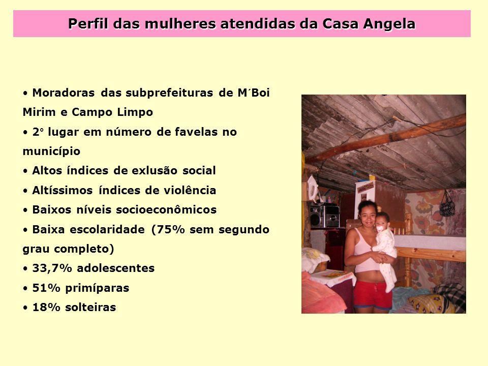 Perfil das mulheres atendidas da Casa Angela Moradoras das subprefeituras de M´Boi Mirim e Campo Limpo 2° lugar em número de favelas no município Alto