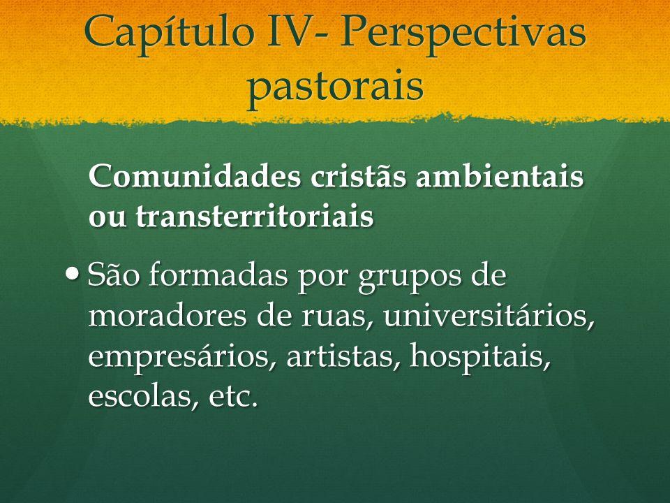 Capítulo IV- Perspectivas pastorais Comunidades cristãs ambientais ou transterritoriais São formadas por grupos de moradores de ruas, universitários, empresários, artistas, hospitais, escolas, etc.