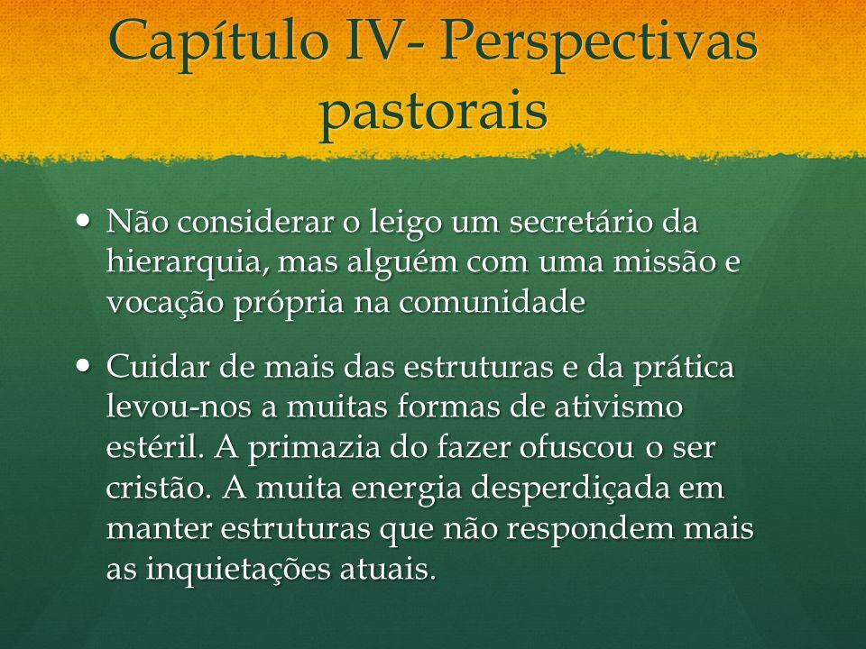 Capítulo IV- Perspectivas pastorais Não considerar o leigo um secretário da hierarquia, mas alguém com uma missão e vocação própria na comunidade Não