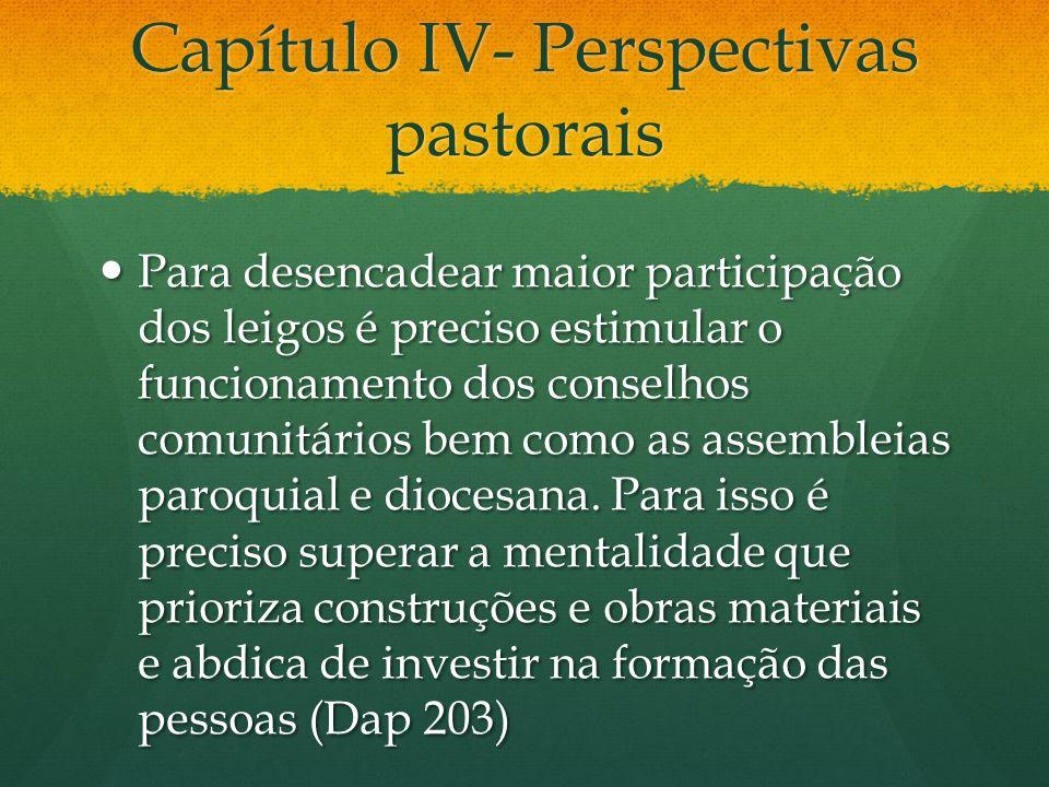 Capítulo IV- Perspectivas pastorais Para desencadear maior participação dos leigos é preciso estimular o funcionamento dos conselhos comunitários bem