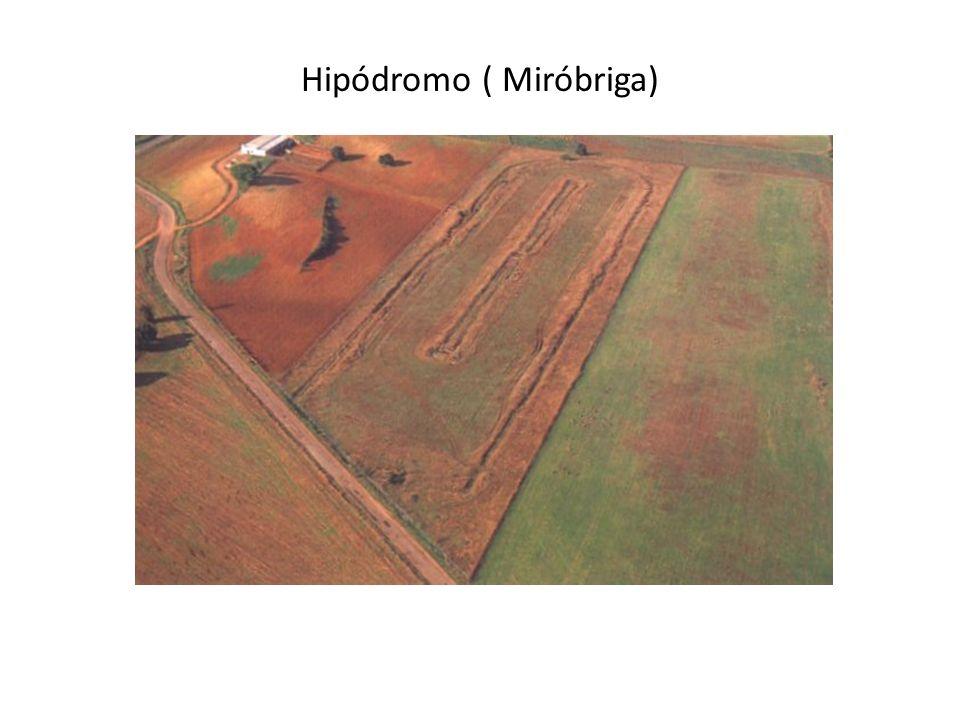 Hipódromo ( Miróbriga)