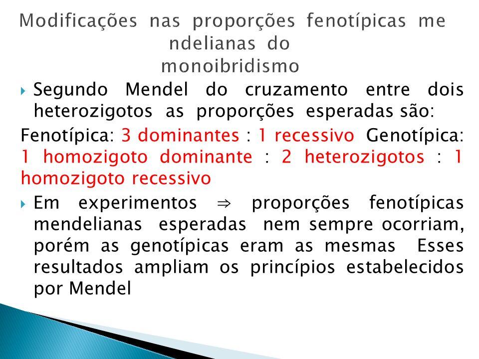 Segundo Mendel do cruzamento entre dois heterozigotos as proporções esperadas são: Fenotípica: 3 dominantes : 1 recessivo Genotípica: 1 homozigoto dom