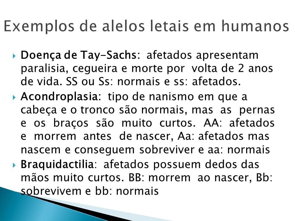 Doença de Tay-Sachs: afetados apresentam paralisia, cegueira e morte por volta de 2 anos de vida. SS ou Ss: normais e ss: afetados. Acondroplasia: tip