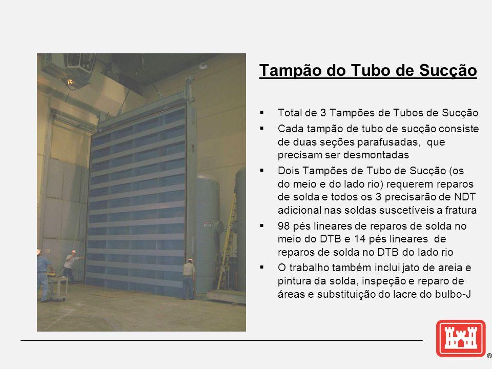 Tampão do Tubo de Sucção Total de 3 Tampões de Tubos de Sucção Cada tampão de tubo de sucção consiste de duas seções parafusadas, que precisam ser des