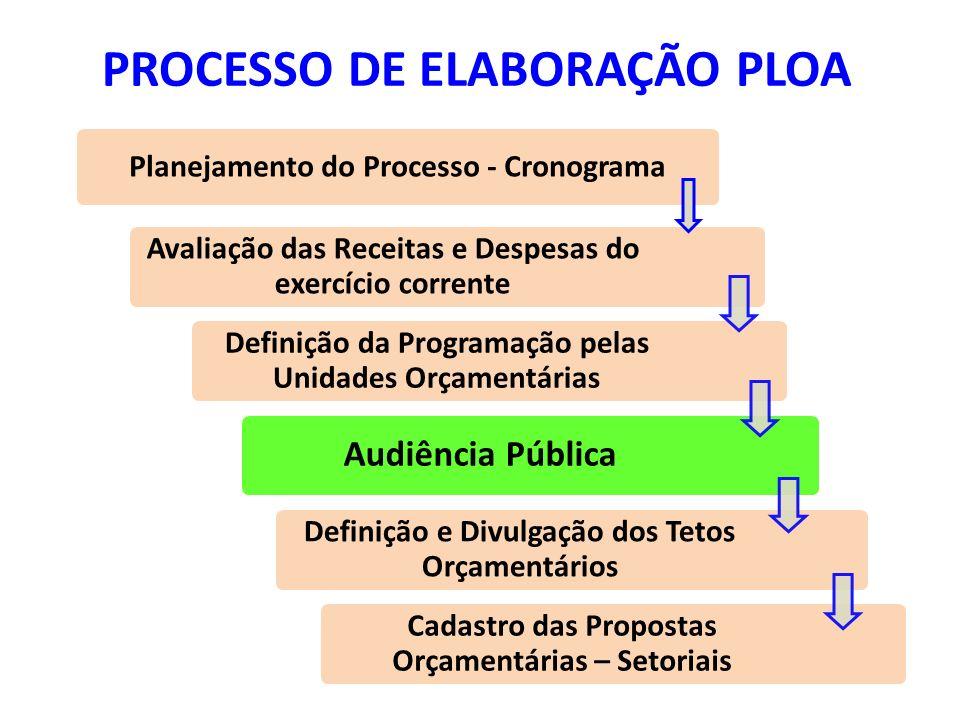 PROCESSO DE ELABORAÇÃO PLOA Avaliação das Receitas e Despesas do exercício corrente Definição da Programação pelas Unidades Orçamentárias Audiência Pú
