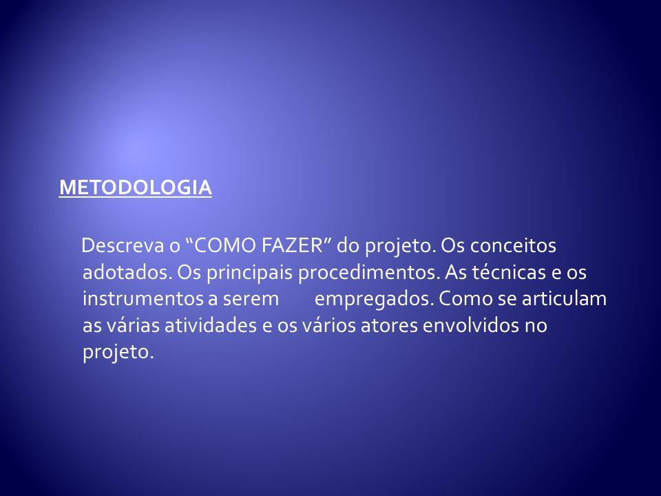 METODOLOGIA Descreva o COMO FAZER do projeto.Os conceitos adotados.
