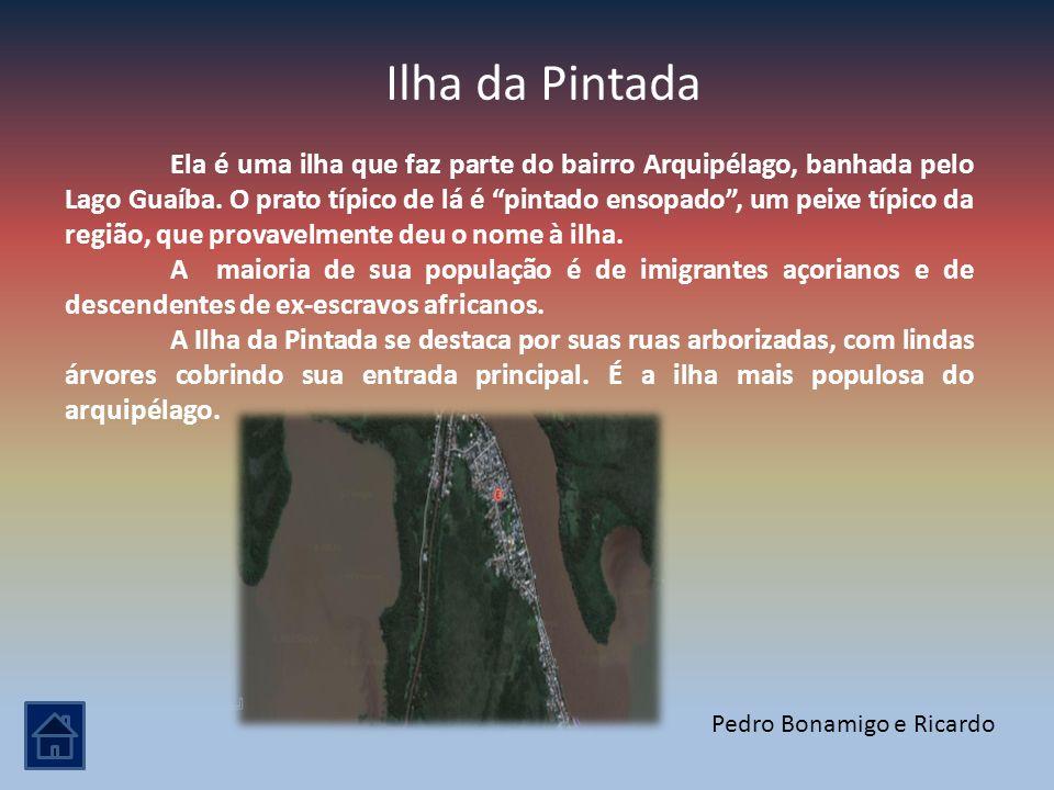 Ilha da Pintada Ela é uma ilha que faz parte do bairro Arquipélago, banhada pelo Lago Guaíba. O prato típico de lá é pintado ensopado, um peixe típico