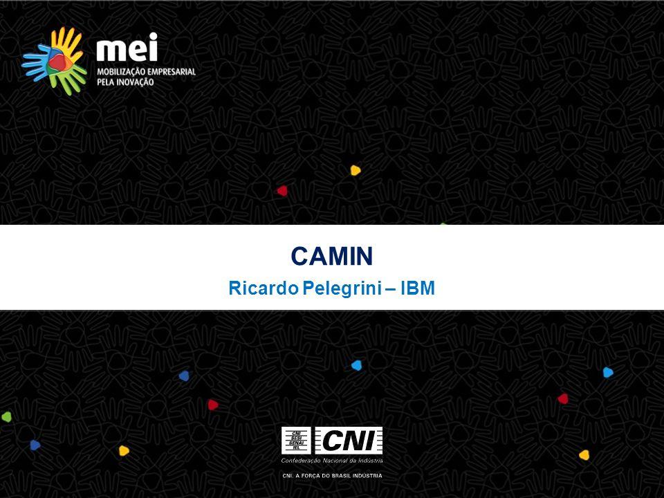 CAMIN Ricardo Pelegrini – IBM