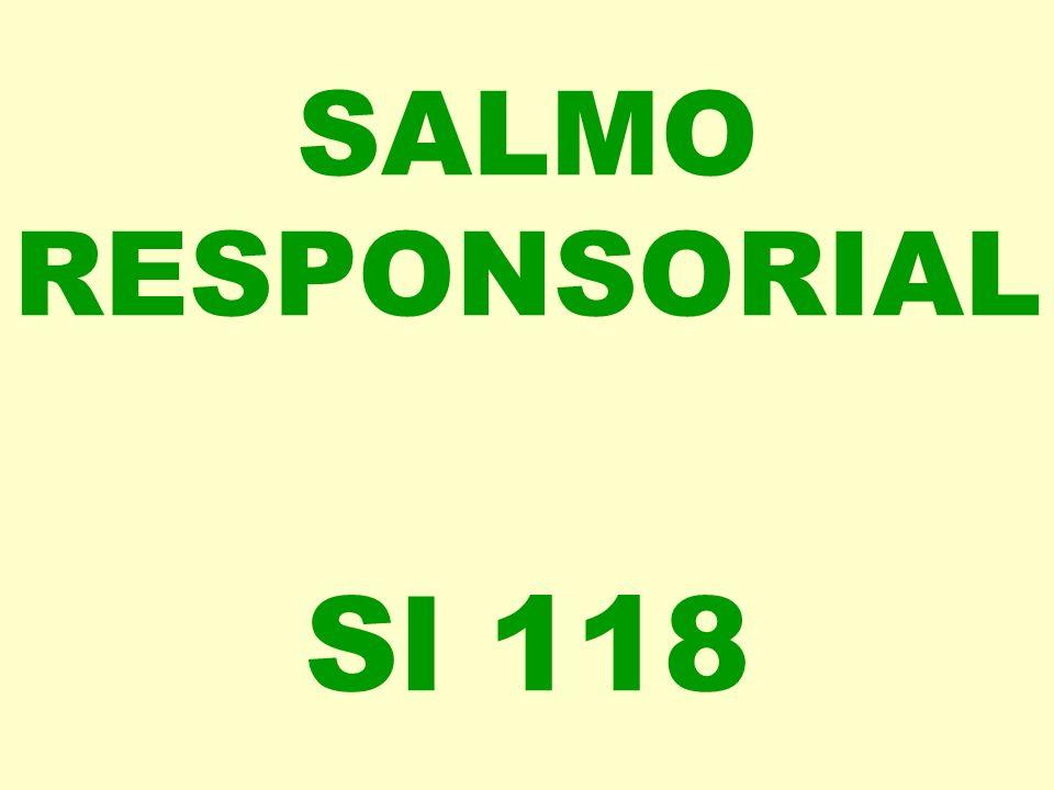 SALMO RESPONSORIAL Sl 118