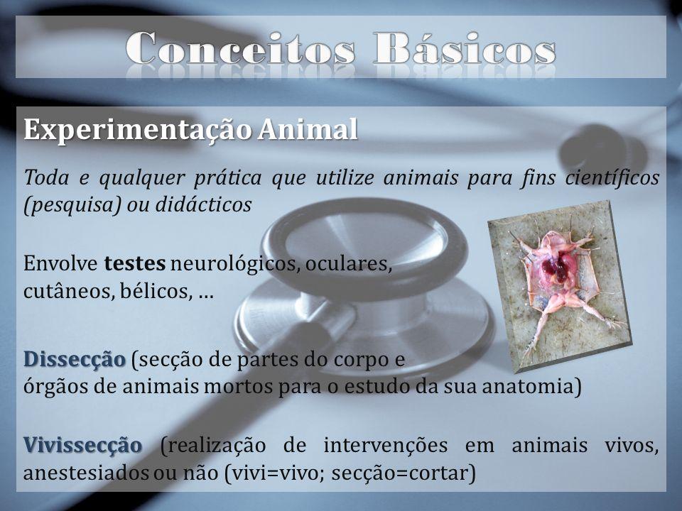Operationsimulator® Operationsimulator® o pedaço de borracha com simulações de artérias e pele de poliuretano para praticar suturas.