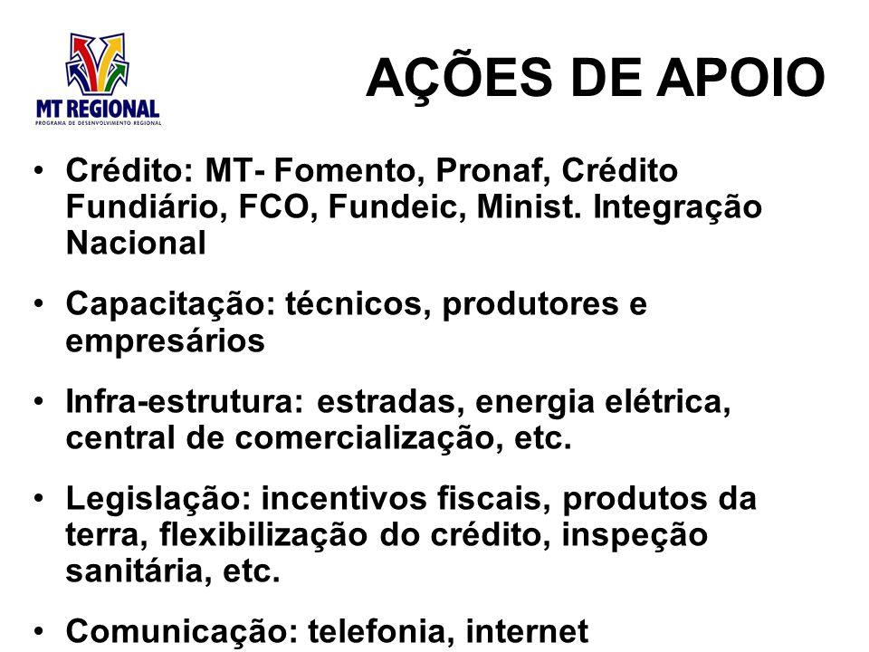 Crédito: MT- Fomento, Pronaf, Crédito Fundiário, FCO, Fundeic, Minist. Integração Nacional Capacitação: técnicos, produtores e empresários Infra-estru