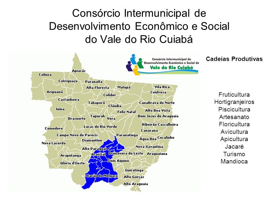 Consórcio Intermunicipal de Desenvolvimento Econômico e Social do Vale do Rio Cuiabá Cadeias Produtivas Fruticultura Hortigranjeiros Piscicultura Artesanato Floricultura Avicultura Apicultura Jacaré Turismo Mandioca