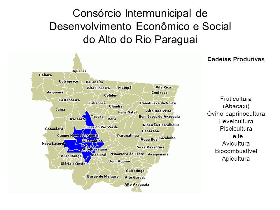 Cadeias Produtivas Fruticultura (Abacaxi) Ovino-caprinocultura Heveicultura Piscicultura Leite Avicultura Biocombust í vel Apicultura Consórcio Intermunicipal de Desenvolvimento Econômico e Social do Alto do Rio Paraguai