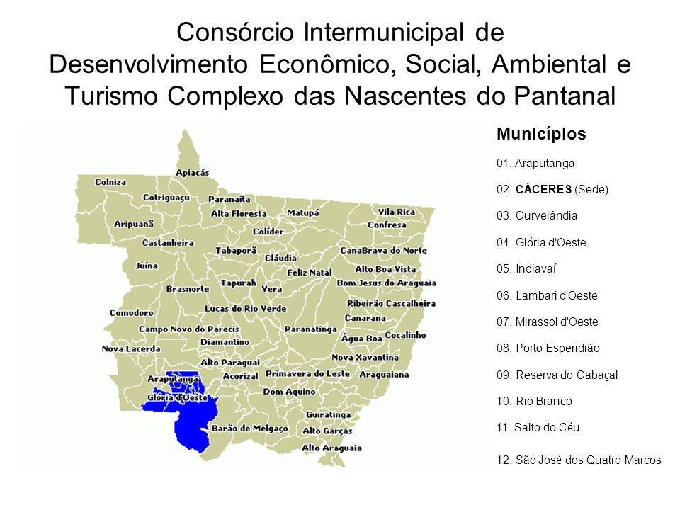Consórcio Intermunicipal de Desenvolvimento Econômico, Social, Ambiental e Turismo Complexo das Nascentes do Pantanal Municípios 01.