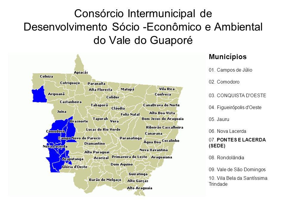 Consórcio Intermunicipal de Desenvolvimento Sócio -Econômico e Ambiental do Vale do Guaporé Municípios 01.