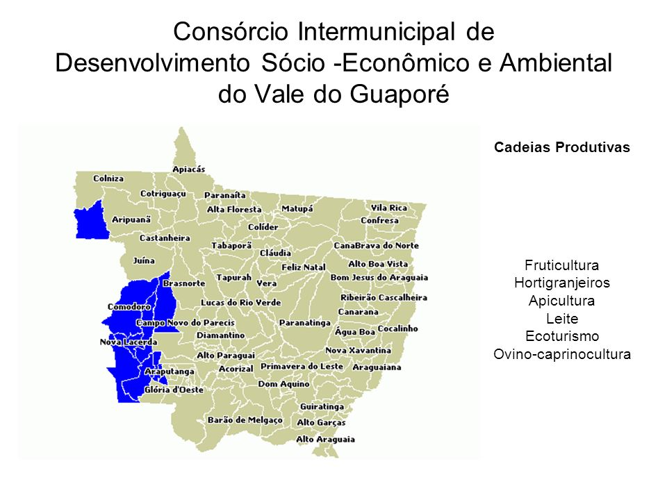 Cadeias Produtivas Fruticultura Hortigranjeiros Apicultura Leite Ecoturismo Ovino-caprinocultura Consórcio Intermunicipal de Desenvolvimento Sócio -Econômico e Ambiental do Vale do Guaporé