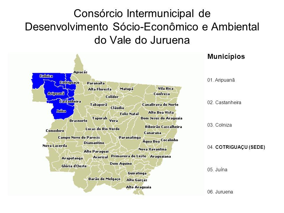 Consórcio Intermunicipal de Desenvolvimento Sócio-Econômico e Ambiental do Vale do Juruena Municípios 01.