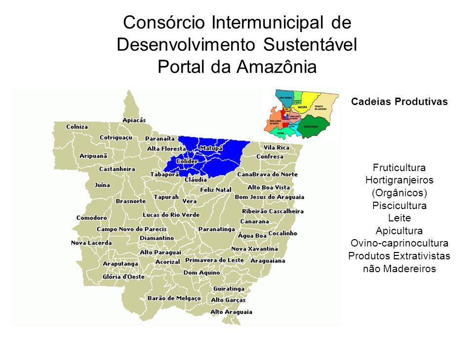 Consórcio Intermunicipal de Desenvolvimento Sustentável Portal da Amazônia Cadeias Produtivas Fruticultura Hortigranjeiros (Orgânicos) Piscicultura Leite Apicultura Ovino-caprinocultura Produtos Extrativistas não Madereiros