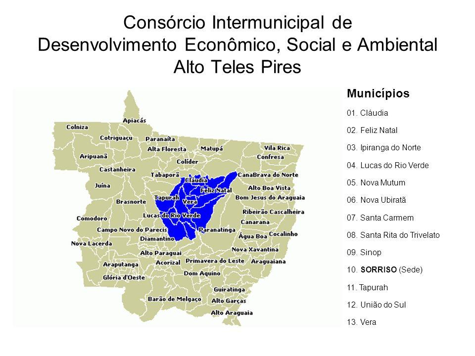 Consórcio Intermunicipal de Desenvolvimento Econômico, Social e Ambiental Alto Teles Pires Municípios 01.